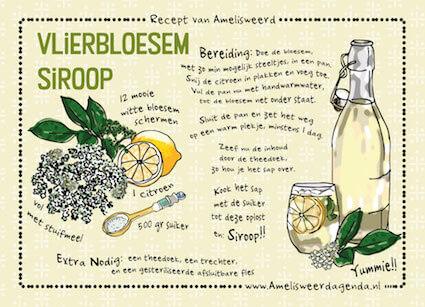 Recept vlierbloesemsiroop