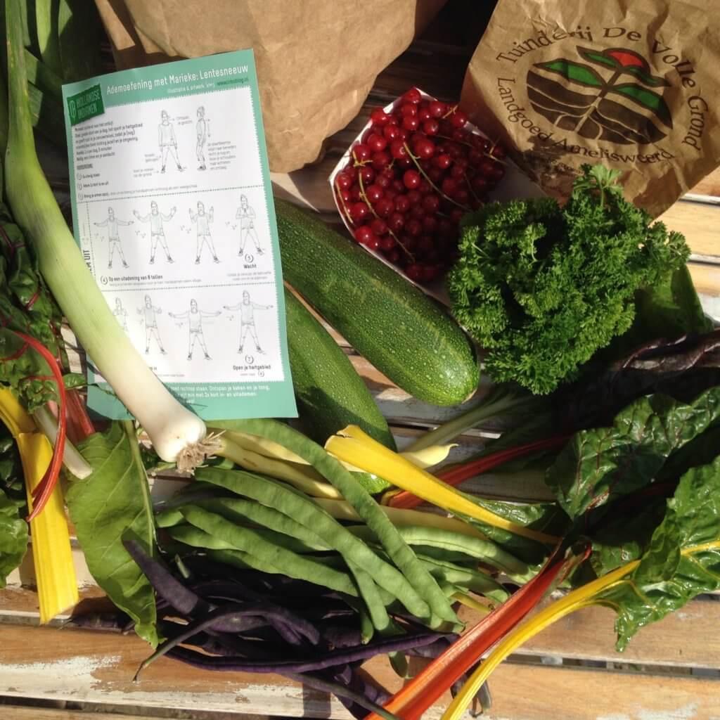 groentetas de volle grond