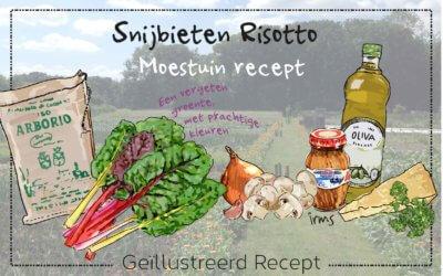 Recept voor een vergeten groente
