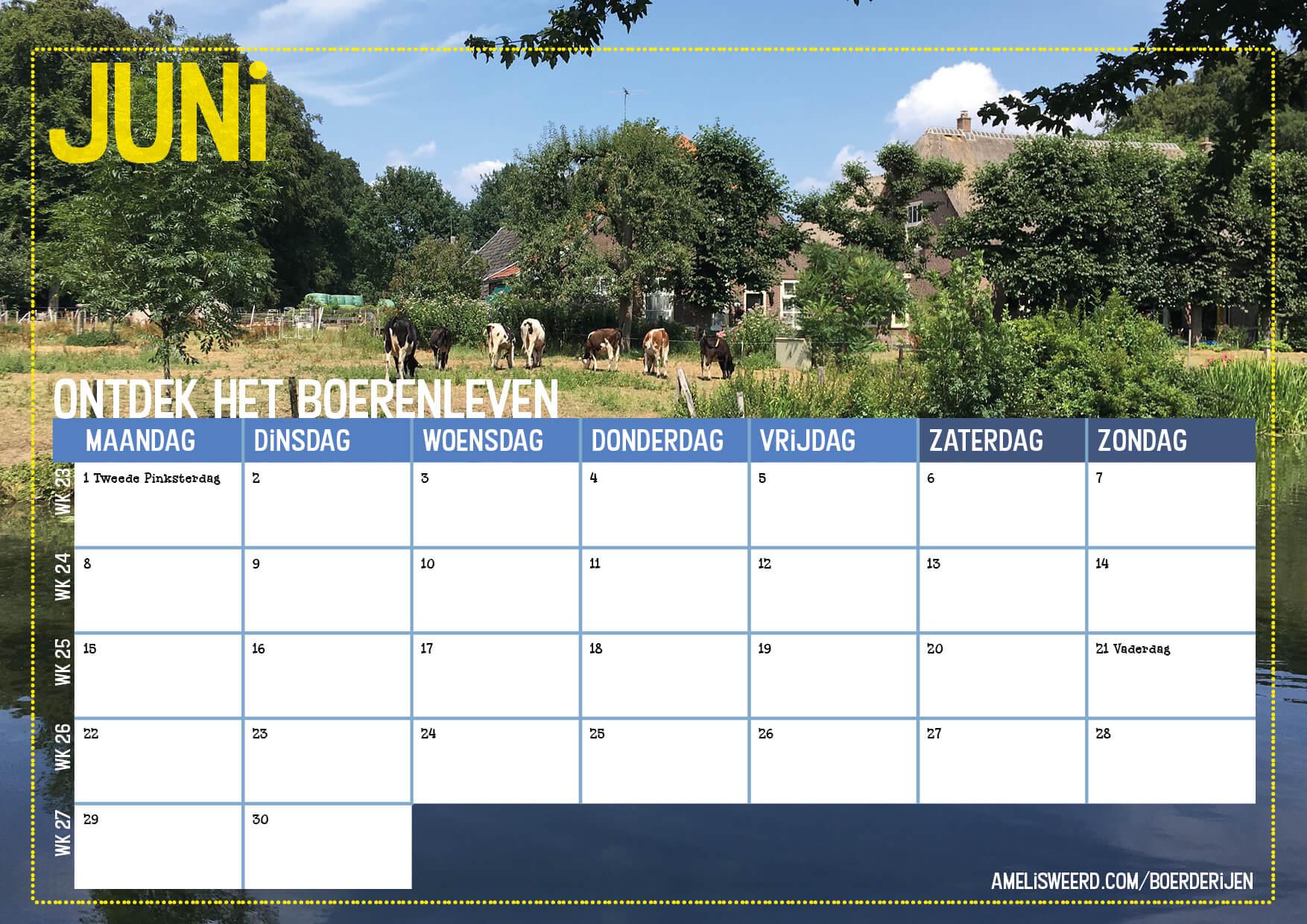 kalender 2020 cover cbk7