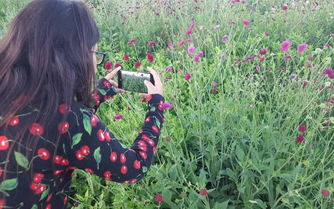 Fotografie workshop Beter leren kijken