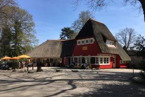 Theehuis Rhijnauwen 2018