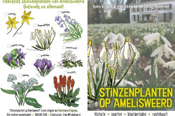 Stinzenplanten op Amelisweerd