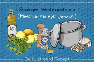 winterpostelein-header-irmsblog-1